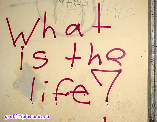 What is the life?